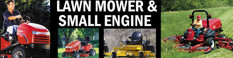 LAWN MOWER AND SMALL ENGINE STARTERS